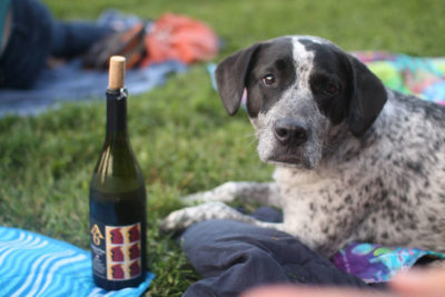 Cardinal Point Winery Gracie