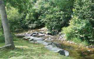 creek at Blue Toad Hard Cider